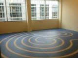 Virtue Medicine Iowa City studio room floor