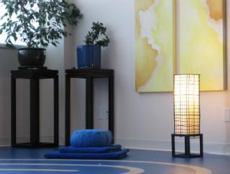 Virtue Medicine Iowa City studio yoga mat light
